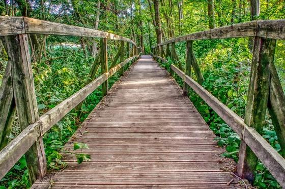 puente-de-madera-prolijo-y-accesible